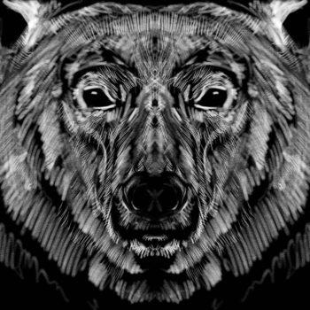 Polar bear portrait. Digital illustration / Software: Autodesk Sketchbook.